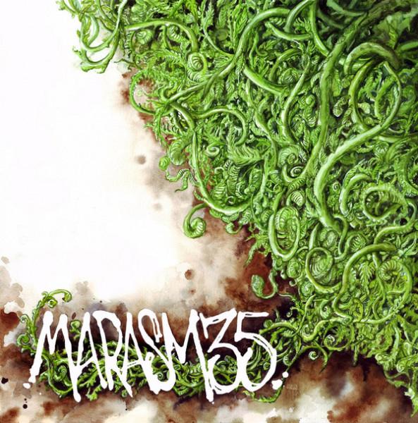 V/A: Marasm 35