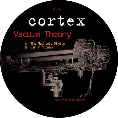 Cortex: Vacuum Theory