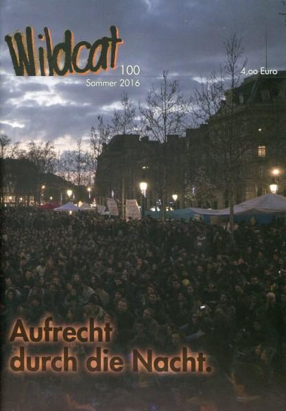 Wildcat 100 - Aufrecht durch die Nacht
