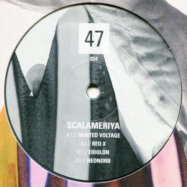 Scalameriya: 47024